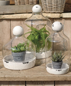 TERRARIUM & BALL TOP