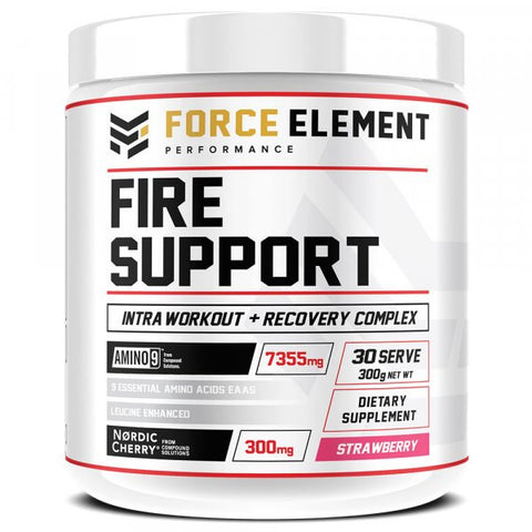 Force Element Fire Support