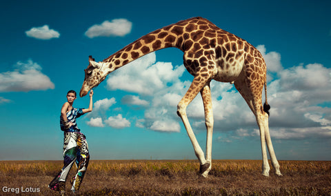 "Greg Lotus ""Grazing Giraffe"""