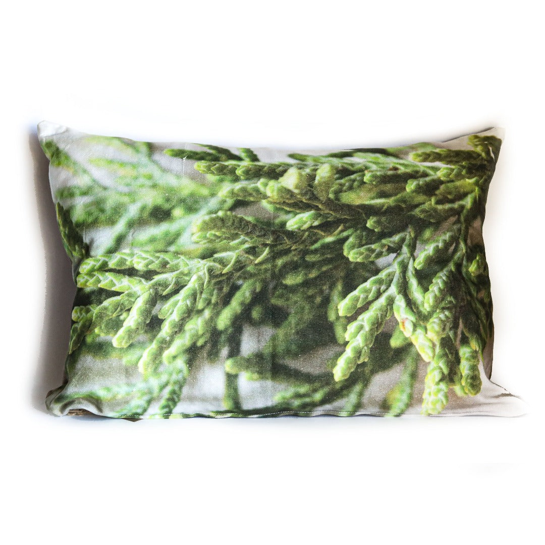 cushion cover: pine