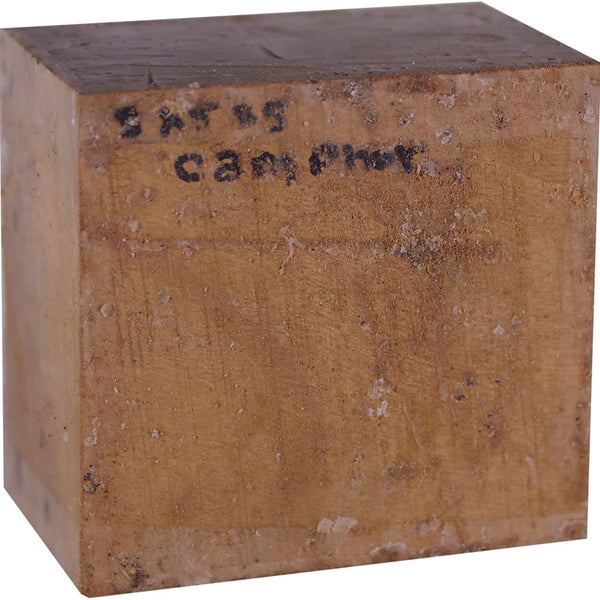 3″ x 5″ x 5″ Camphor Turning Blank