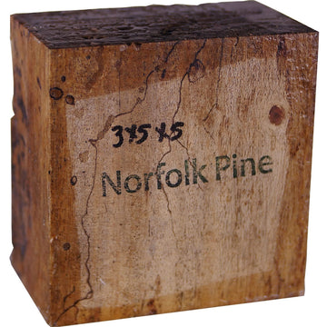 3″ x 5″ x 5″ Norfolk Island Pine Turning Blank