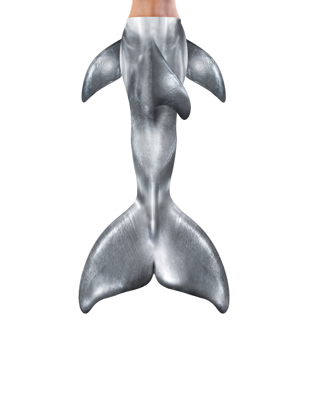 Chrome Dolphin Mermaid Tail