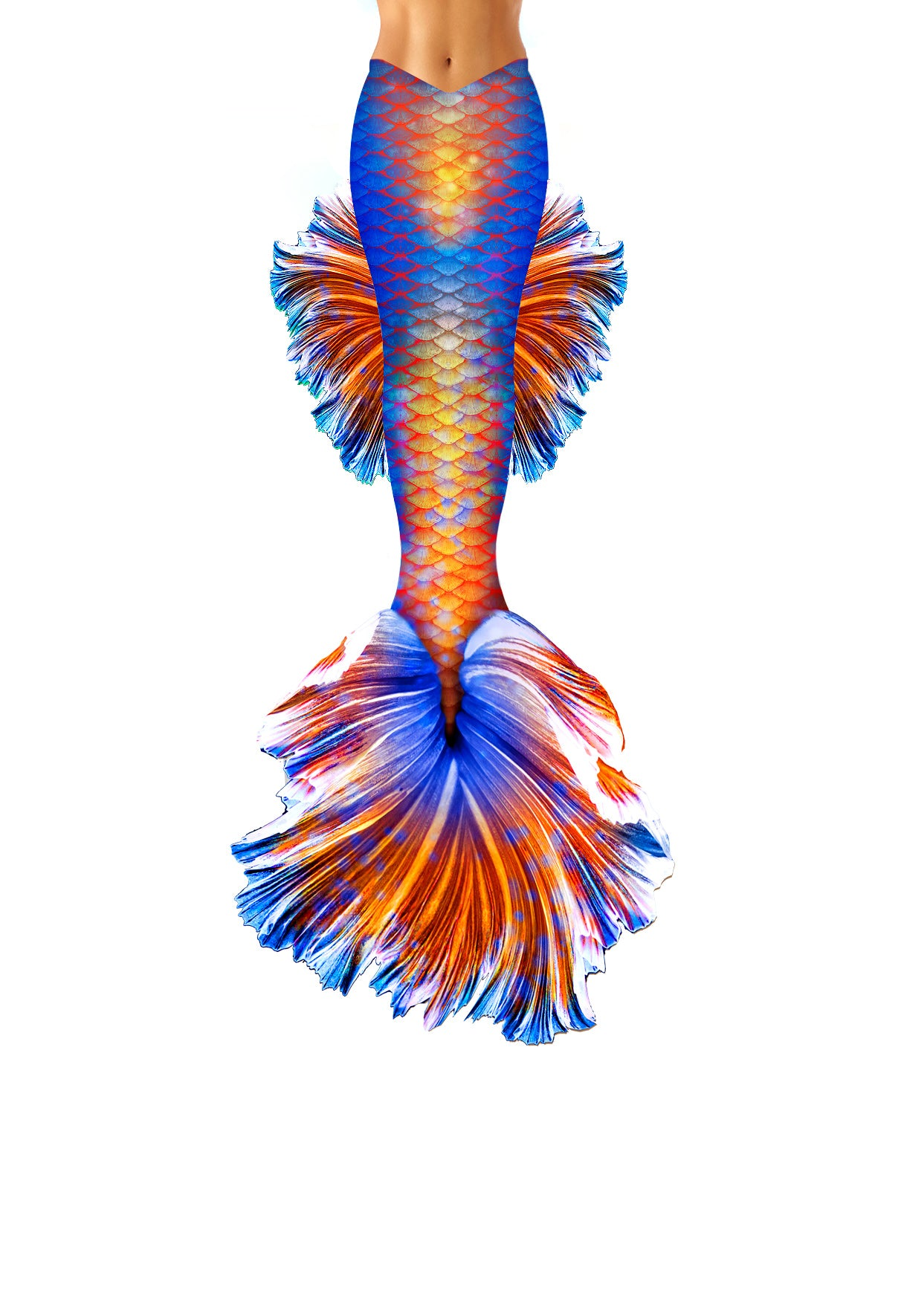 Clementine Betta Fish Mermaid Tail