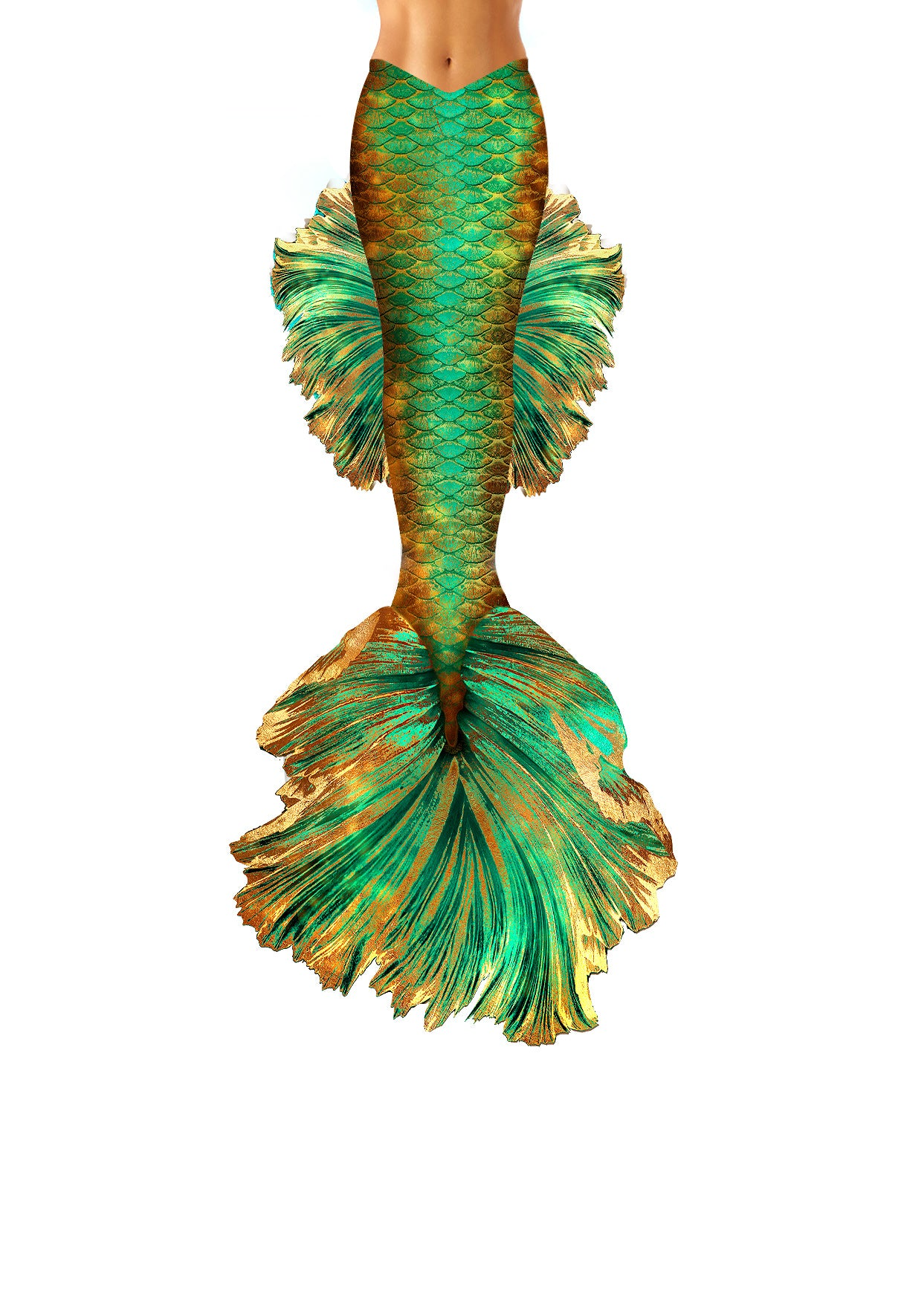 Goldilicious Betta Fish Mermaid Tail