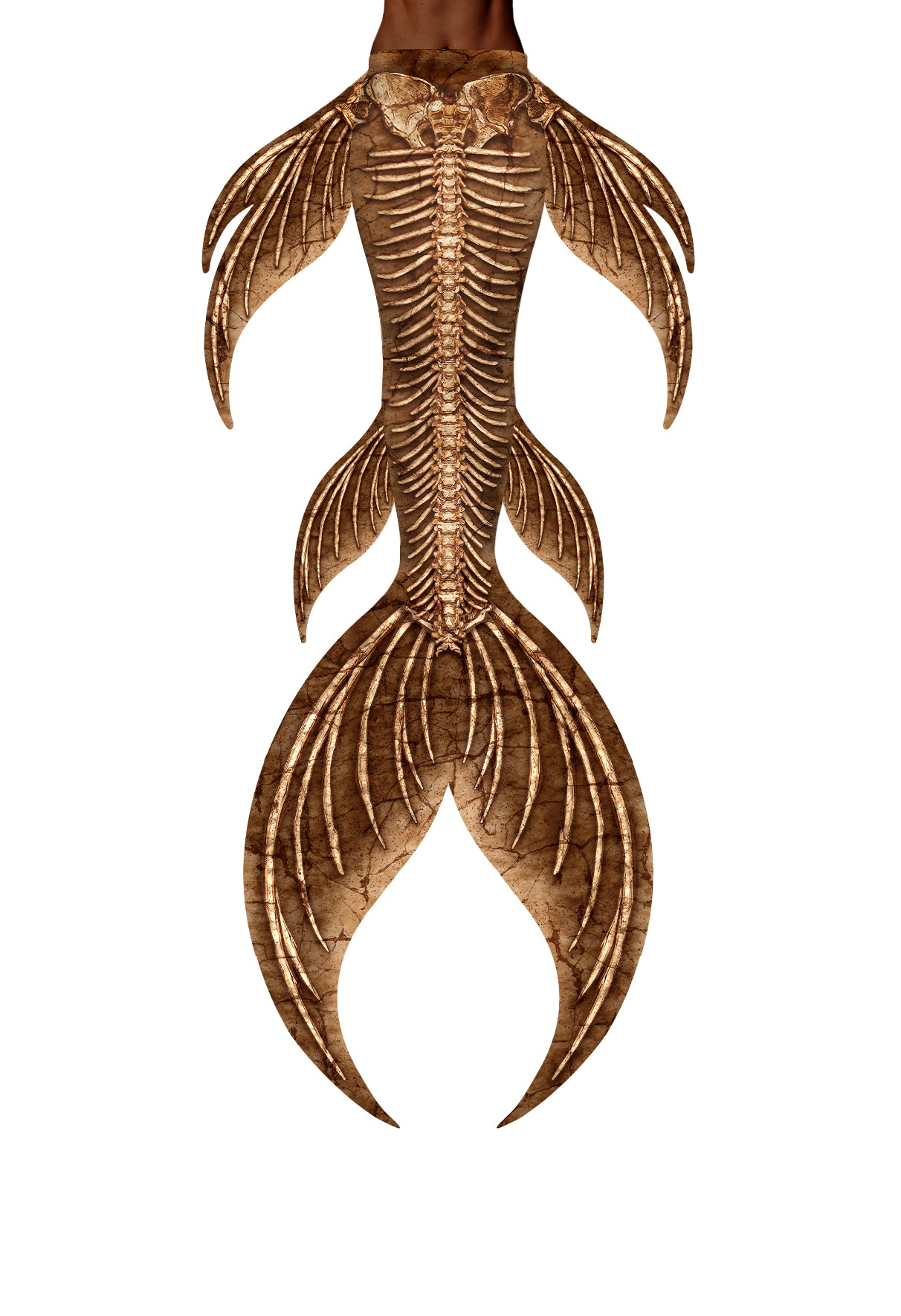 Ancient Bones Mermaid Tail