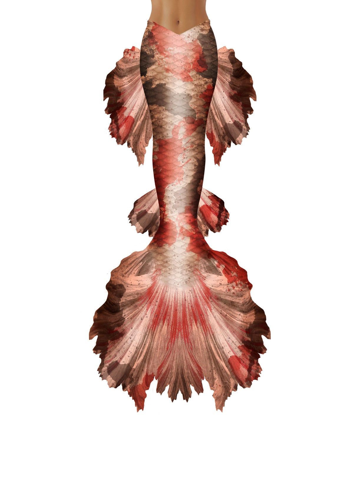 Koi Betta Mermaid Tail