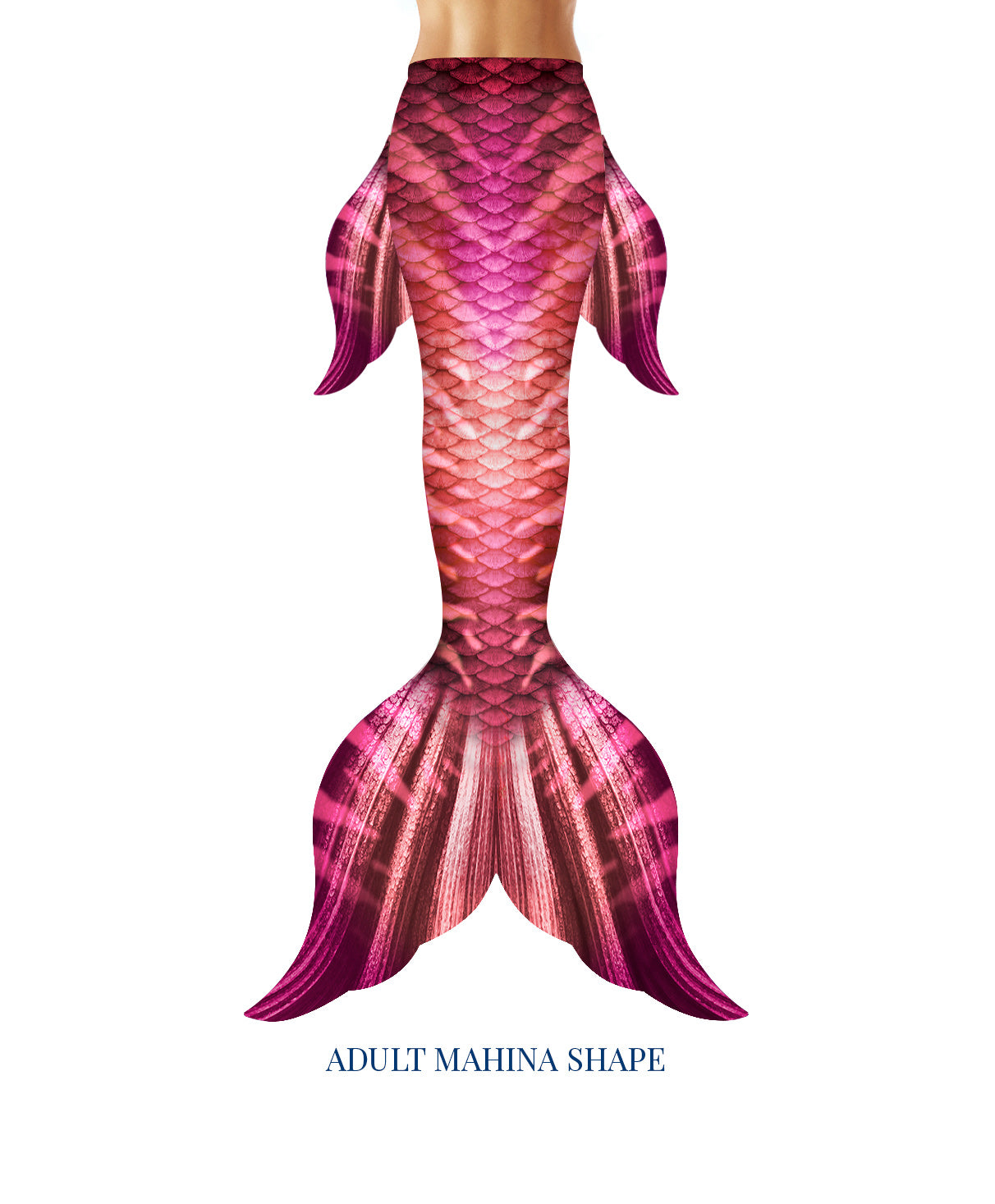 Roseberry Mermaid Tail