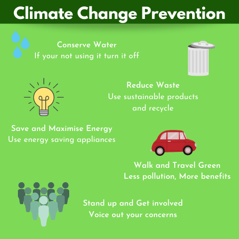 Infograph of ways to prevent climate change