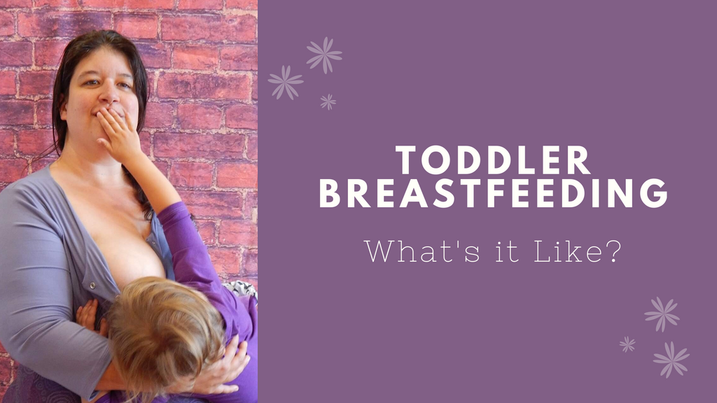 What's Breastfeeding a Toddler Like?