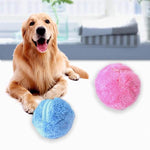 Rolling Ball For Dog