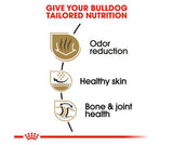 Royal Canin Dry Food 3Kg - Adult Bulldog