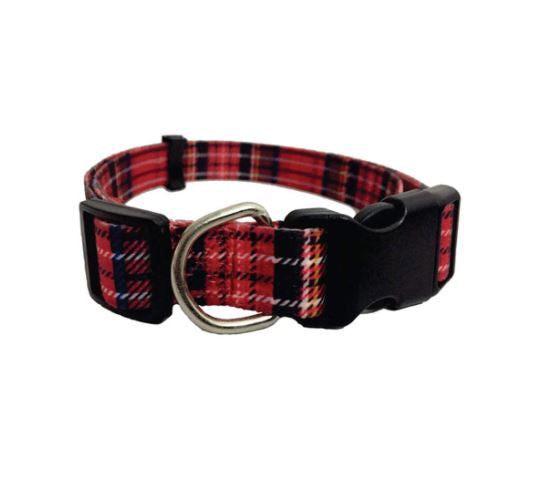 Nylon Collar For Dogs with Buckle - 15mm x 40cm