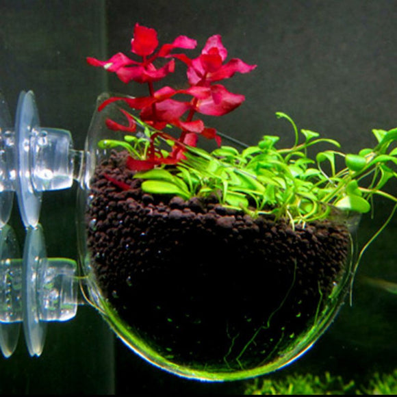 Aquarium decoration Hanging fish tank Mini Crystal Glass Pot Polka Water potted planting cylinder cup aquarium accessories