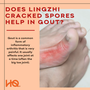 Does Lingzhi Cracked Spores help in gout?
