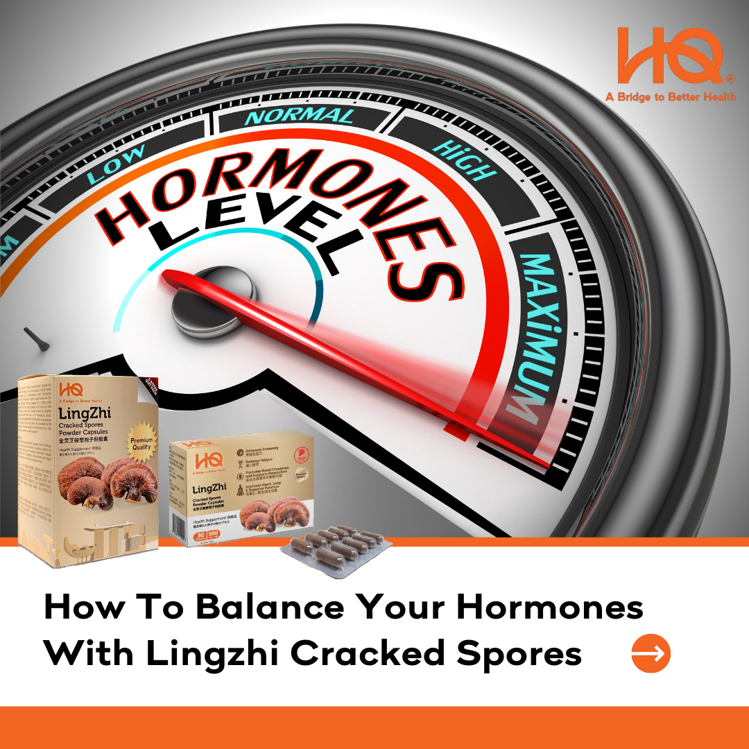 How To Balance Your Hormones With Lingzhi Cracked Spores?