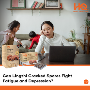 Can Lingzhi Cracked Spores Fight Fatigue and Depression?