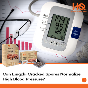 Can Lingzhi Cracked Spores Normalize High Blood Pressure?