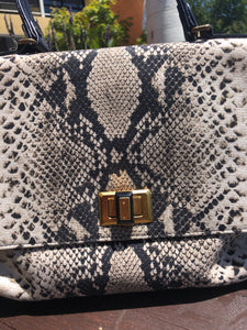 Lanvin Canvas snake Zipper detail Purse