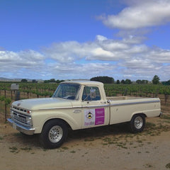 Lola - Our TheraBee Delivery Truck