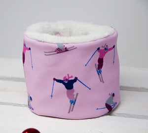 Skiing Loop