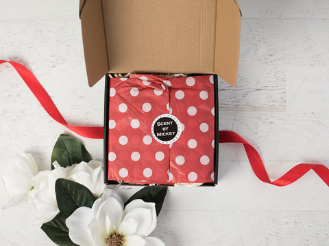 Scent By MIckey subscription box