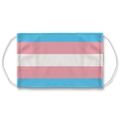 Transgender Flag Face Mask