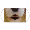 Cavalier King Charles Dog Nose Mouth Face Mask
