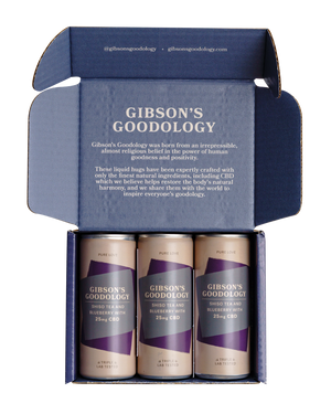 Shiso Tea and Blueberry 3 Pack - Gibson's Goodology
