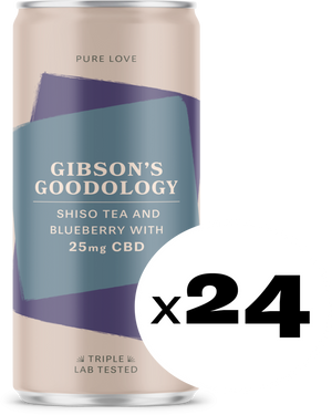 Shiso Tea and Blueberry 24 Pack - Gibson's Goodology