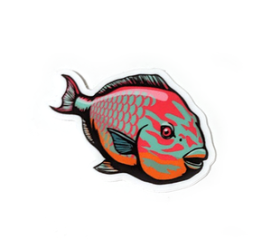 "Rainbow Parrotfish Sticker - 2"" x 1.5"""