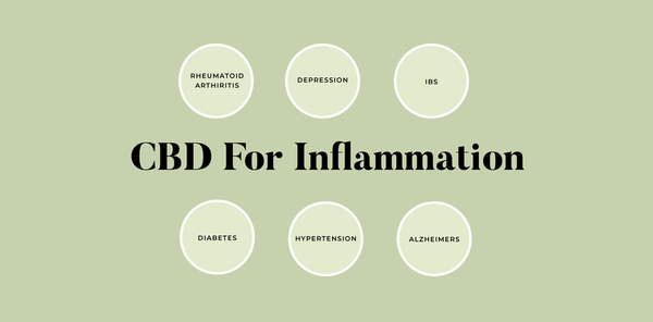 CBD for inflammation infographic