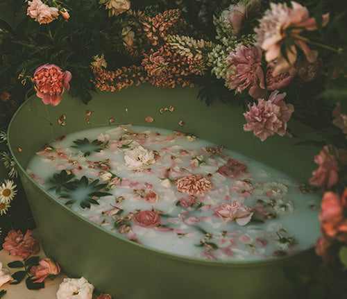 Bathtub with cannabis leaves and flowers shot by Anita Austvika