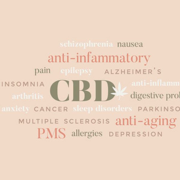 Benefits of CBD infographic
