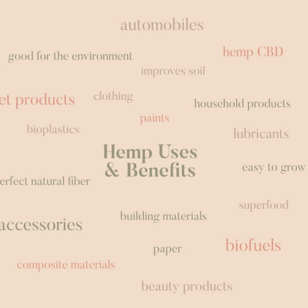 Hemp uses and benefits infographic