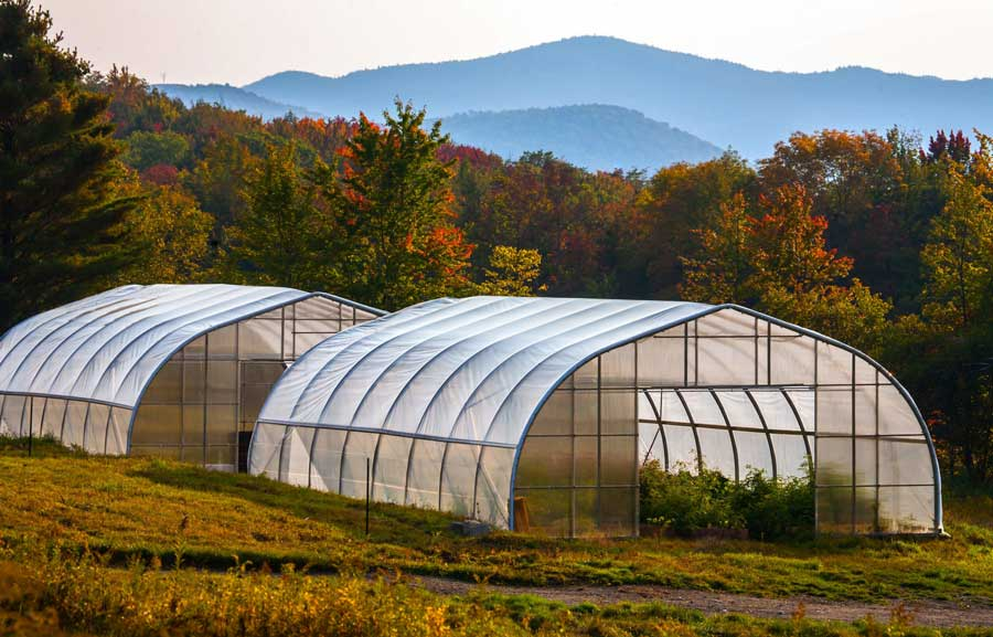 hemp greenhouse at Luce Farm in Vermont