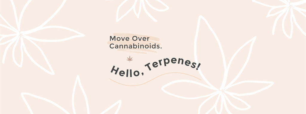 Infographic that says move over cannabinoids.  Hello terpenes.