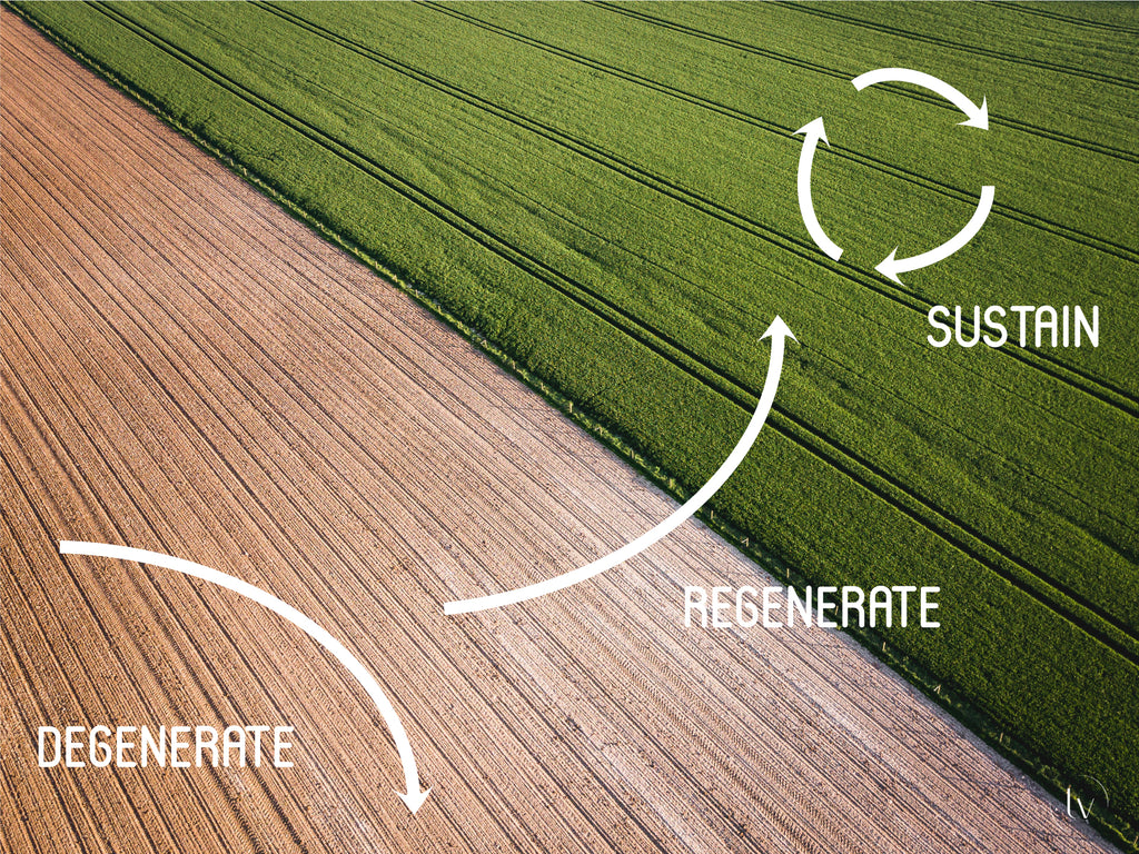 Regenerative farming diagram