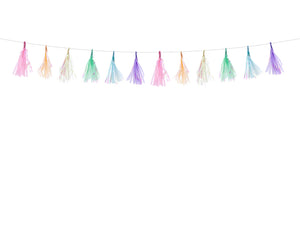Shimmering pastel blue, green, pink, purple, white and yellow tassel garlands. Pastel party decorations for girls and boys children's party.