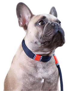 Hudson Collar and Leash Set