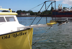 Fluke style anchor to anchor in the river