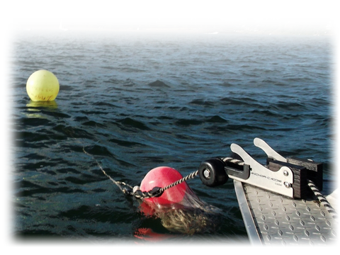 Anchor Nest Cadet with buoy ball