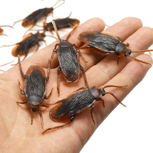 trendweekly.com:Fun Novelty Simulation False Cockroach Toy