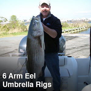 6 Arm Eel Umbrella Rigs