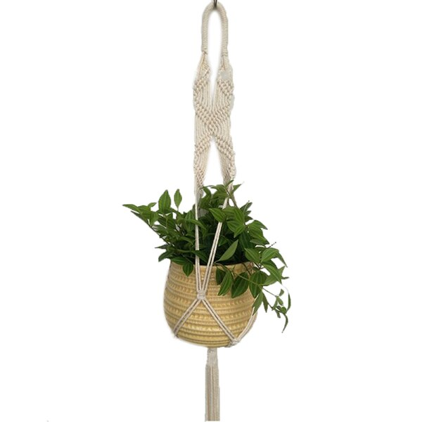 Hanging Basket Plants - Hanging Basket Flowers - Hanging Pots