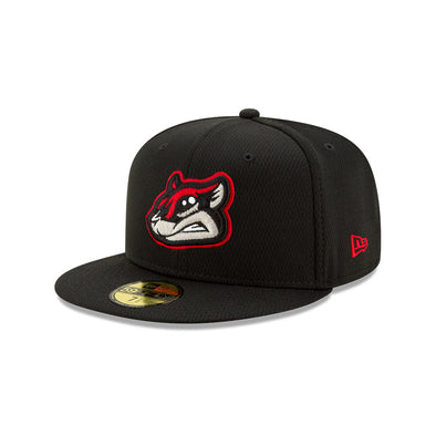 Richmond Flying Squirrels New Era BP Diamond Hat