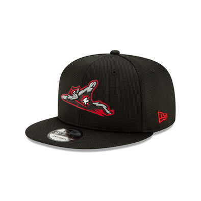 Richmond Flying Squirrels 9FIFTY Clubhouse Collection Snapback