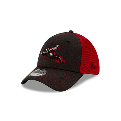 Richmond Flying Squirrels New Era 39Thirty STH NEO Cap