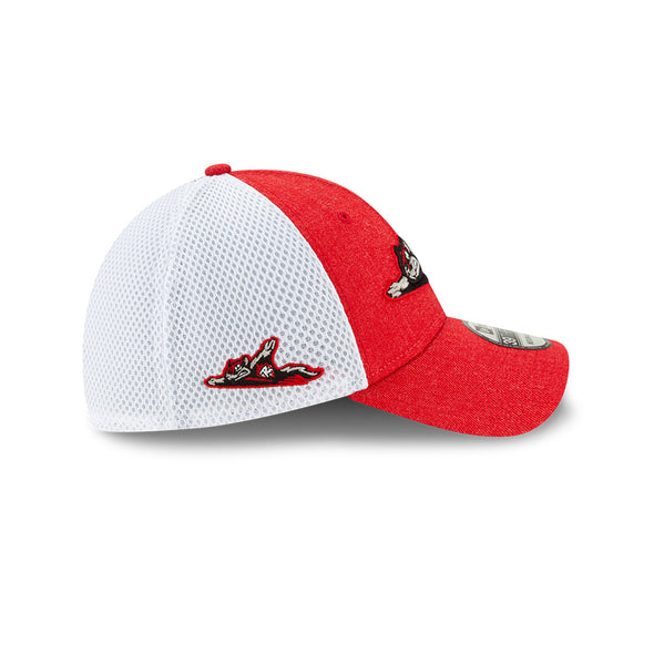 Richmond Flying Squirrels 39Thirty Heather Front NEO Cap