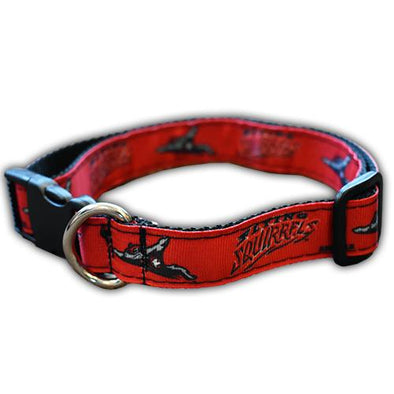 Richmond Flying Squirrels Dog collar